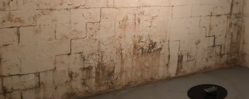 Wall Coatings | Basement Waterproofing Service | Area Waterproofing & Concrete